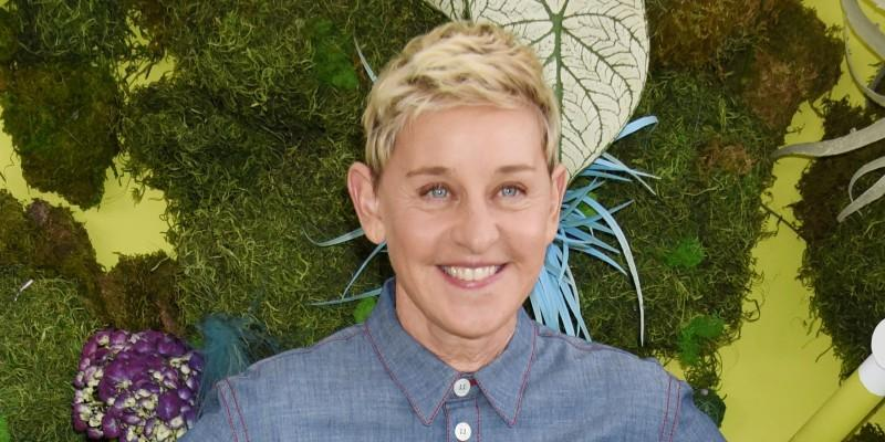 Ellen DeGeneres Wearing a Jean Top