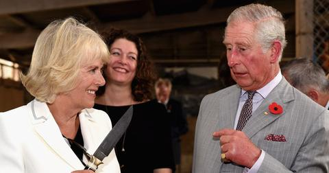 prince charles cheating camilla long