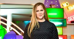 amy schumer pregnant ivf