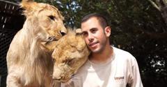 Lions cuddle trainer screenshot