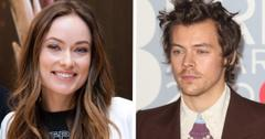 olivia wilde maybe dating harry styles pp