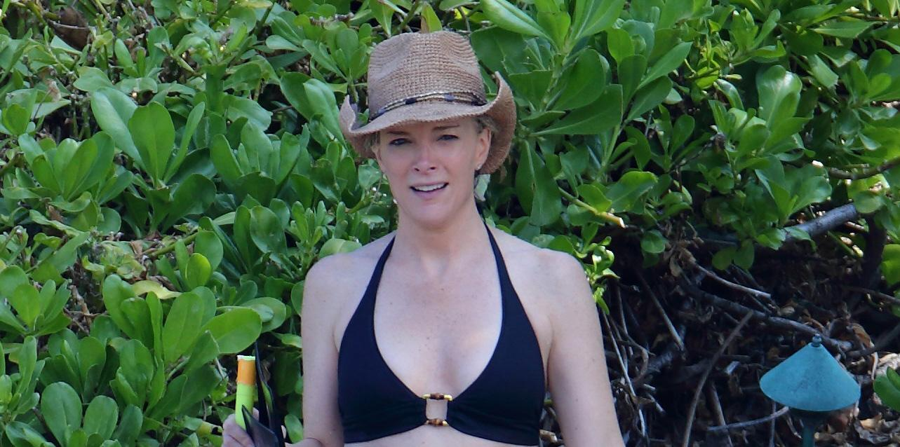 EXCLUSIVE: **** NO WEB UNTIL 6pm GMT MARCH 31 *** Megyn Kelly on vacation in Hawaii going snorkeling in bikini top.