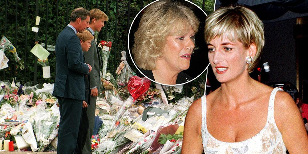 Princess Diana's Death And The Public Anger That Followed Around Camilla