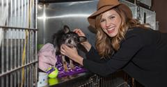 Sophia Bush volunteers with Trio Animal Foundation to support the Barefoot Wine Soles of the Year Program in Chicago_4