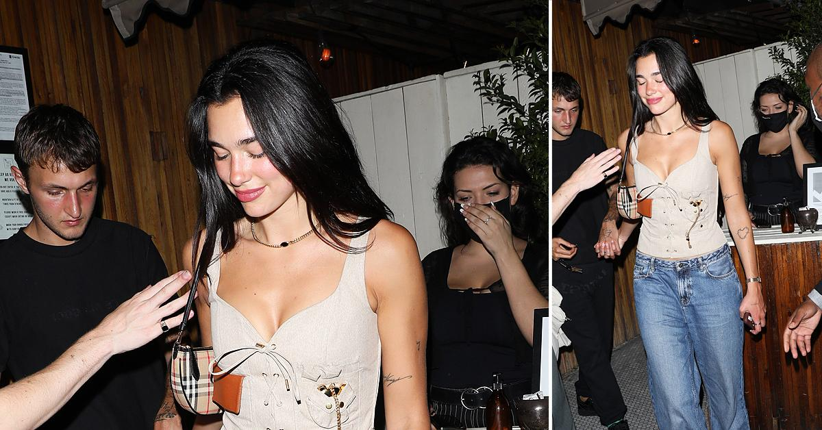 dua lipa and anwar hadid party at the nice guy restaurant with friends
