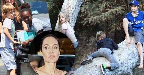Angelina jolie divorce brad pitt kids shiloh park uncle james haven ok long