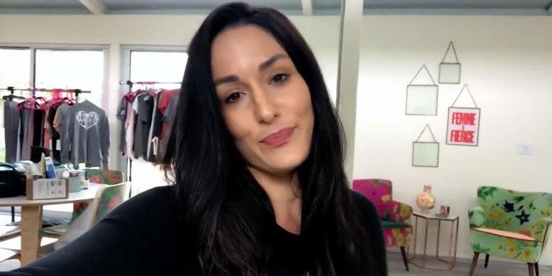 nikki bella video split from john cena pp