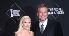 Gwen Stefani And Blake Shelton On Red Carpet Engagement