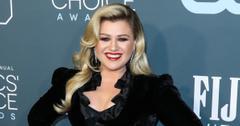 kelly clarkson american idol mean celebrities talk show