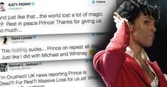 Singer prince twitter