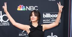 Camila cabello dehydration seattle performance canceled main