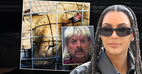 Joe Exotic Asks Kim Kardashian For Help In Getting Presidential Pardon