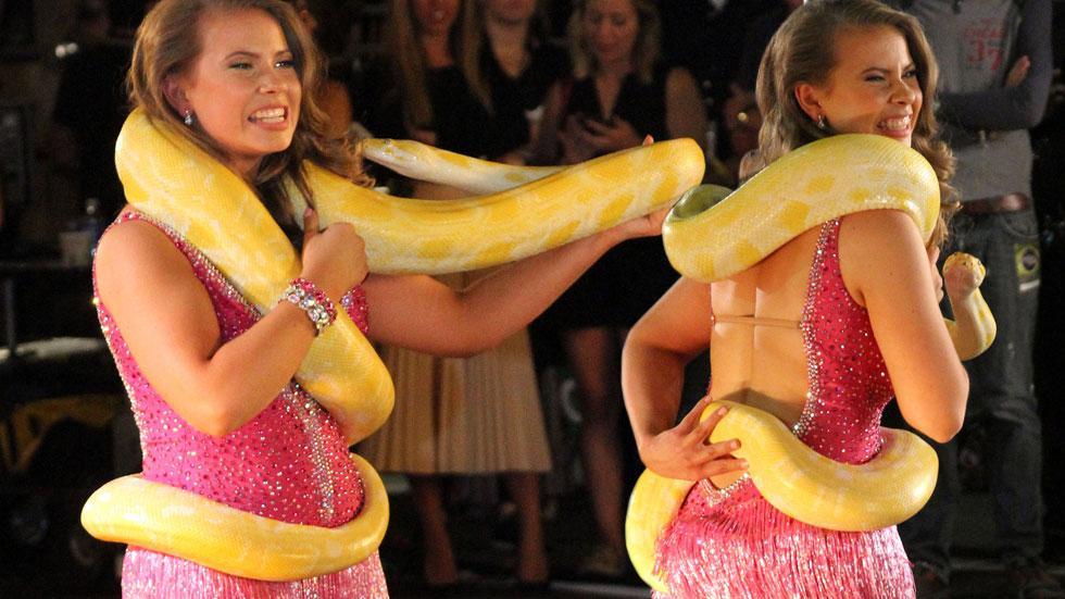 Bindi irwin dwts snake season 21