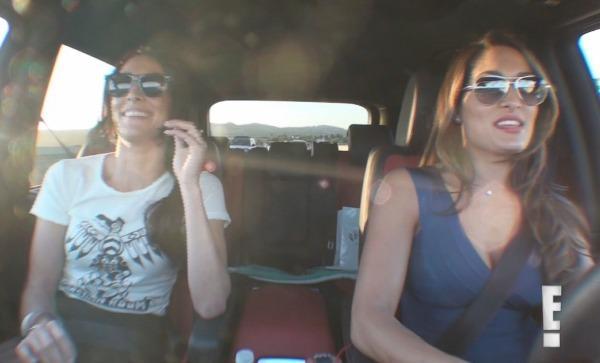 Nikki and Brie, Total Divas