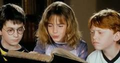 2011__06__Harry_Potter_and_the_Deathly_Hallows_Part_2_June7newsnea 300×144.jpg