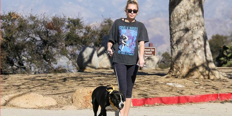 Miley cyrus dog mary jane