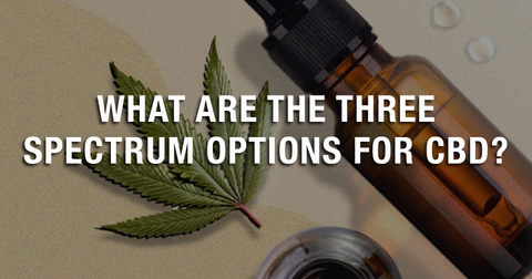 What Are The Three Spectrum Options for CBD?