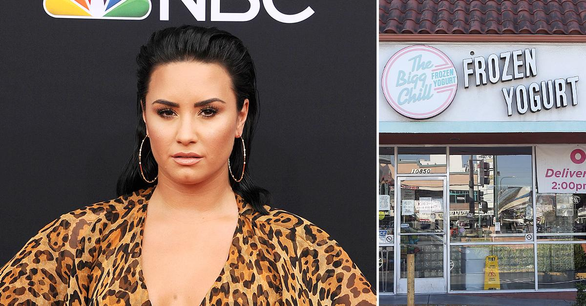 diet culture vultures demi lovato slams froyo shop bigg chill