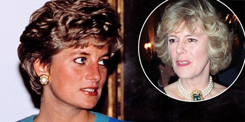 'Fatal Voyage' Podcast Reveals Princess Diana's 'Jealousy' Of Camilla