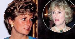 'Fatal Voyage' Podcast Reveals Princess Diana's 'Jealousy' Of Camilla