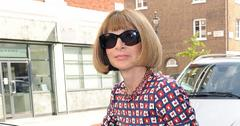 Anna Wintour and husband Shelby Bryan split