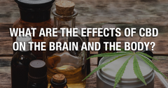 What Are the Effects of CBD on the Brain and the Body?