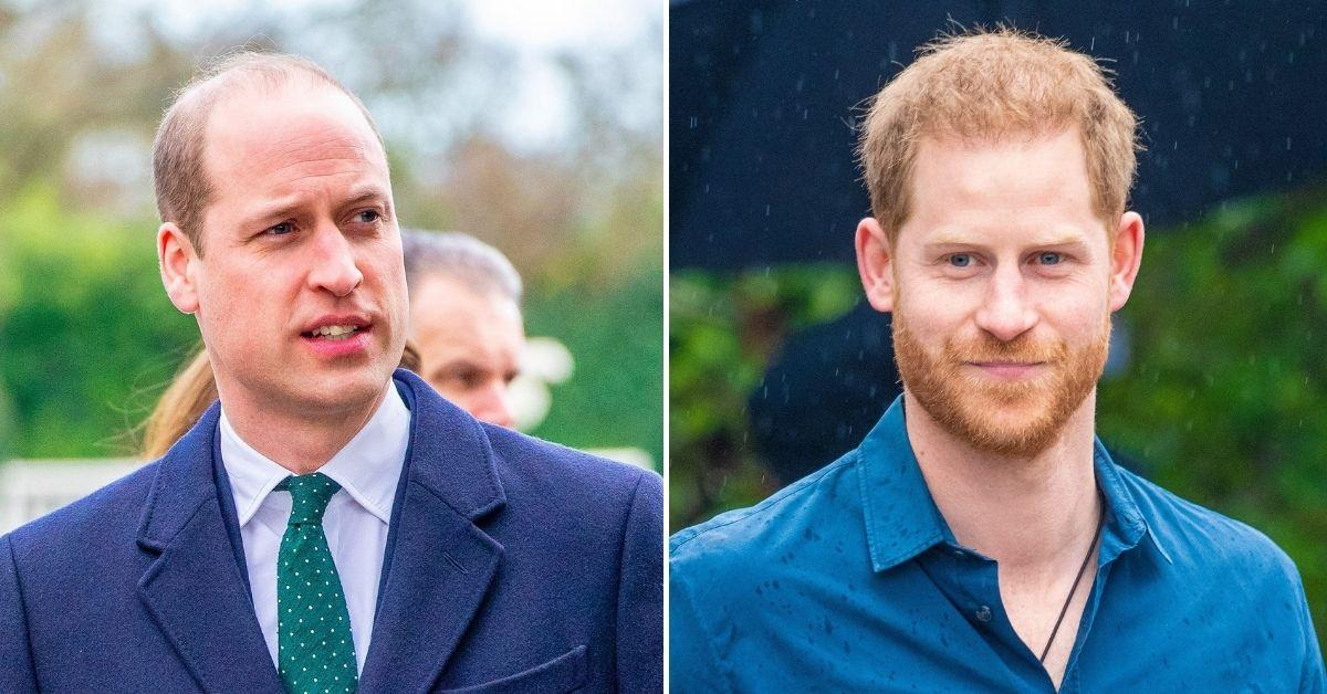 prince william prince harry insisted separate statements unveiling princess diana statue