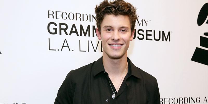 Shawn Mendes Grammy Museum