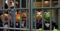 2011__05__The_Muppets_May26newsnea 300×172.jpg