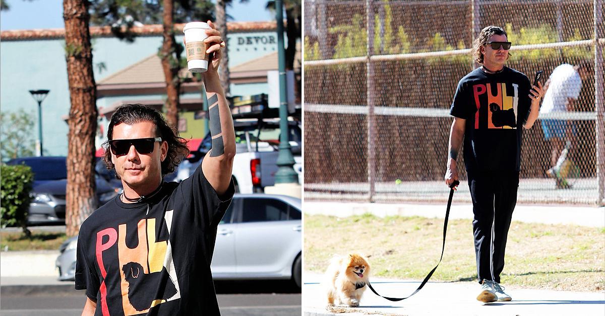gavin rossdale spotted walking dog los angeles sparking fan concern canceling tour