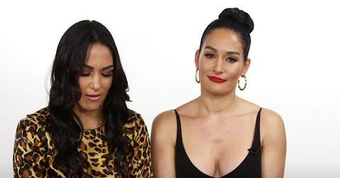Nikki And Brie Bella Interview