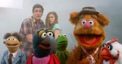 2011__05__Jason_Segal_Amy_Adams_The_Muppets_May23newsnea 300×184.jpg