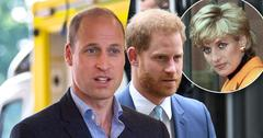 Prince William And Harry Are 'Demanding Answers' To Diana's Interview