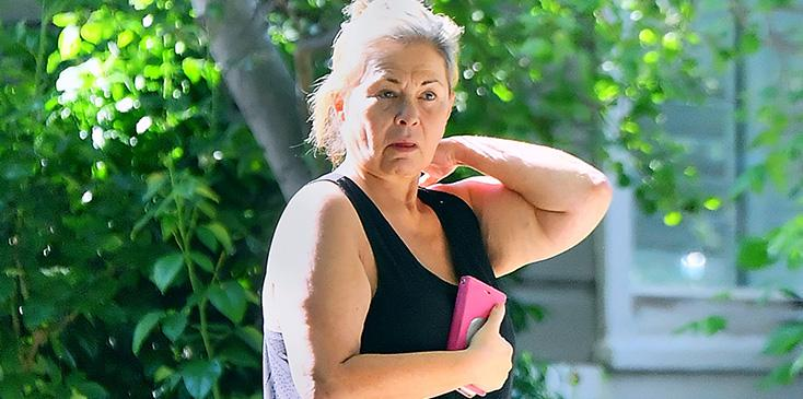 Roseanne barr looks disheveled outside utah home amid racist controversy pics