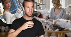 Calvin harris allergic taylor swift cats