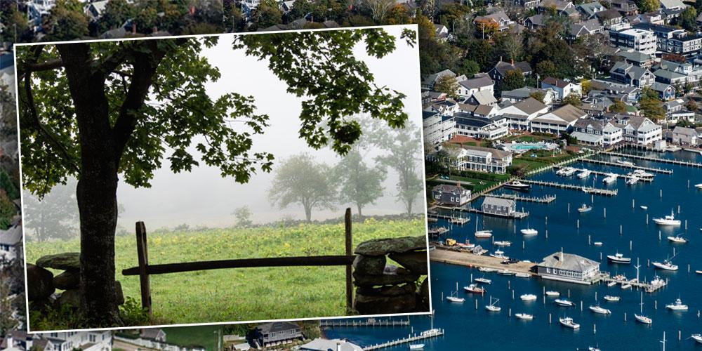 'Vogue' Deletes Martha's Vineyard Wedding Story After Guests Get COVID
