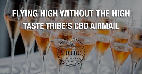02-tuesday-image-tribe-1-1611006989185.jpg