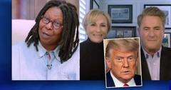 Screen grab of THE VIEW Whoopi Goldberg with guest Morning Joe,inset of Donald Trump