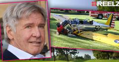 Harrison Ford Plane Crash Eyewitness Recalls Fall