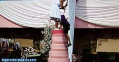 Big brother 16 wedding cake