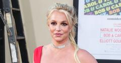 framing britney spears sequel part  liz day filmmakers well placed insiders