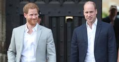 Prince Harry Walking With Prince William