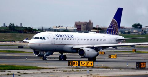 united airlines bans dogs cats after pet deaths pp