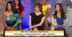 2011__05__Real_Housewives_of_New_Jersey_May17newsnea 300×201.jpg