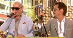 2011__07__Pitbull_July1newsnea 300×206.jpg