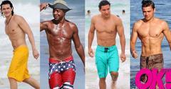 Hottest celeb male beach bodies hollywood