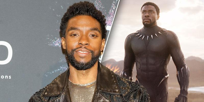 Chadwick Boseman Posing In Front of a Red Carpet/ as Black Panther