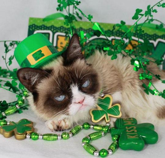 Grumpy Cat St. Patrick's Day Facebook Post