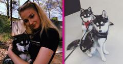 sophie turner joe jonas new puppy pics pp