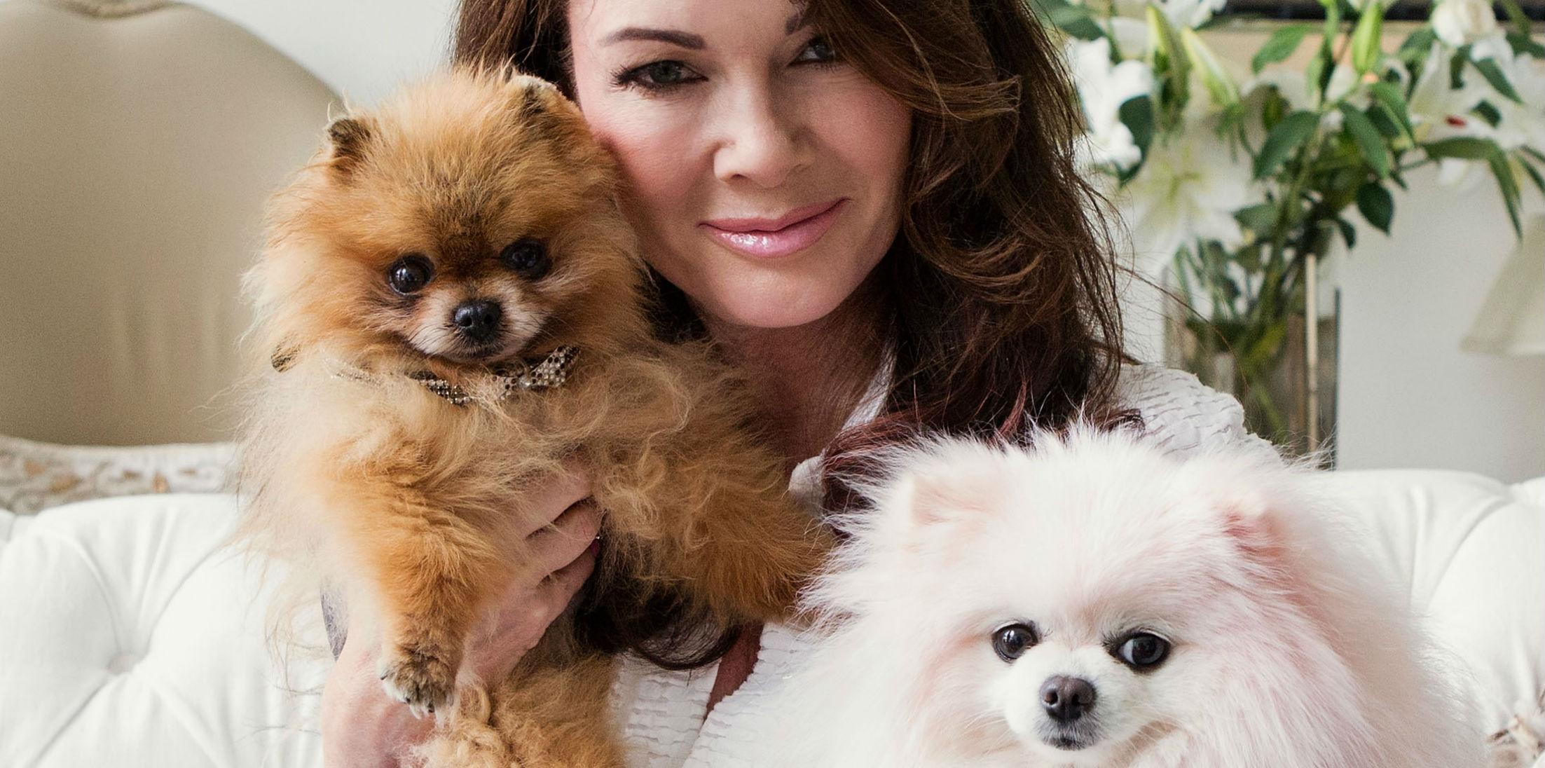 GettyImages RHOB Lisa Vanderpump Second Dog Dies One Week hero